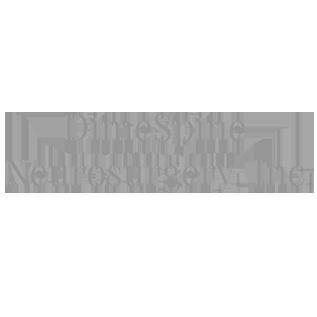 DimeSpine Neurosurgery logo